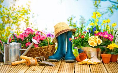 Jardinage au naturel au fil des saisons